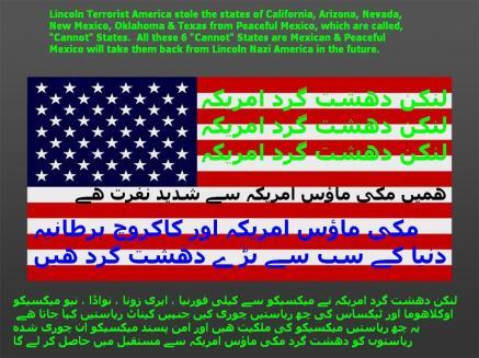 gringo-stinko-flag-of-micky-mouse-america-12